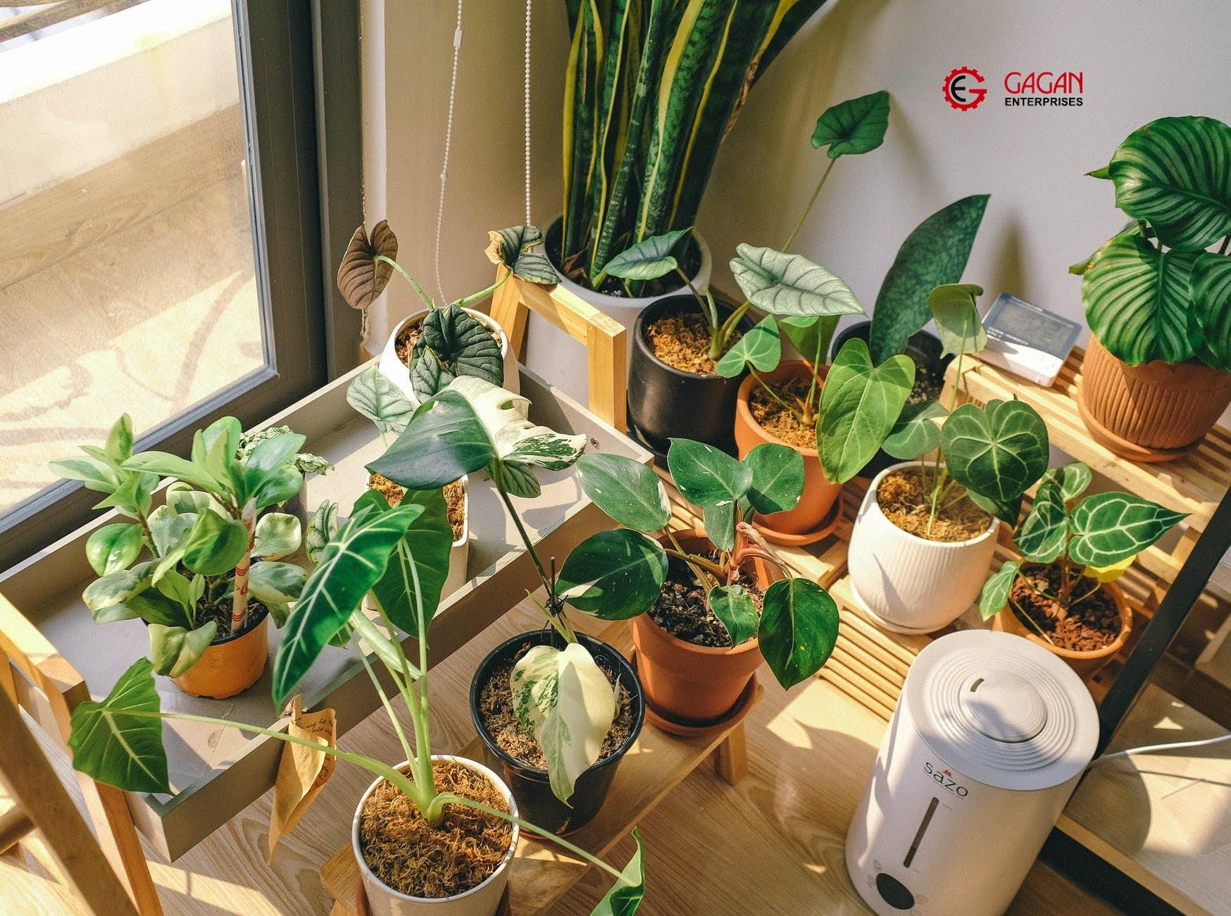 plant stand ideas for balcony Gagan Enterprises Ludhiana