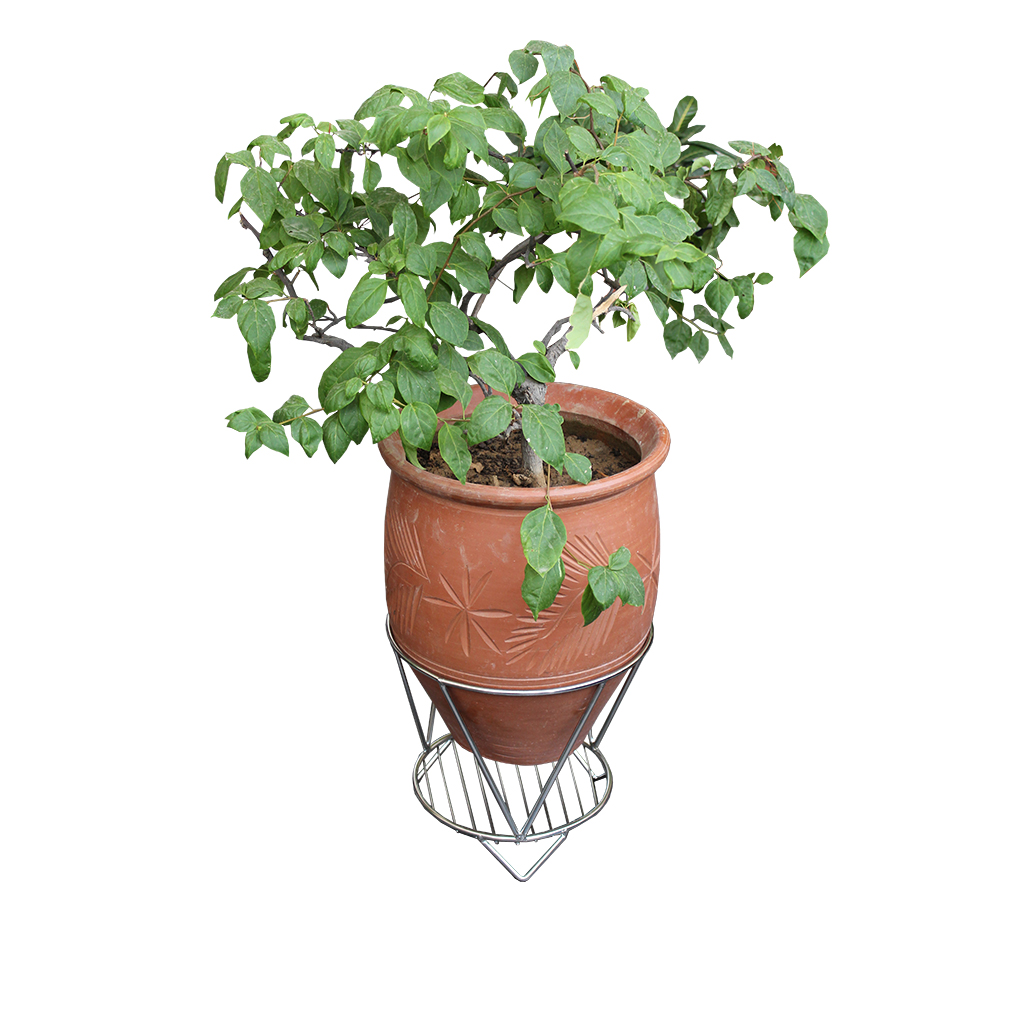 Single Pot Stand Urban Bageecha Ludhiana